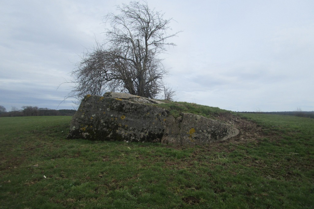 Westwall - Bunker Remains