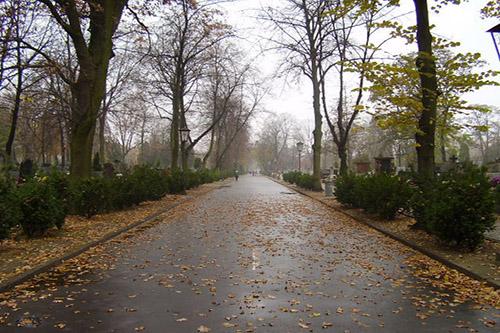 Cemetery Brodno