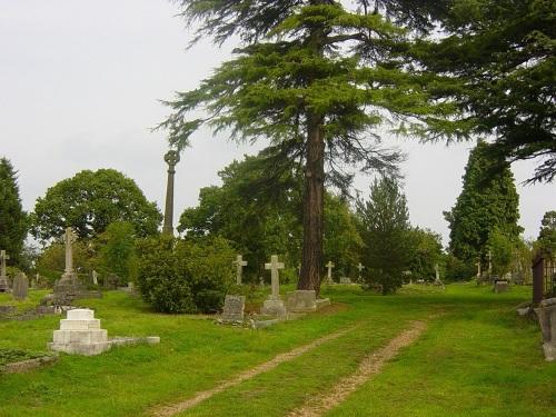 Oorlogsgraven van het Gemenebest Paines Lane Cemetery
