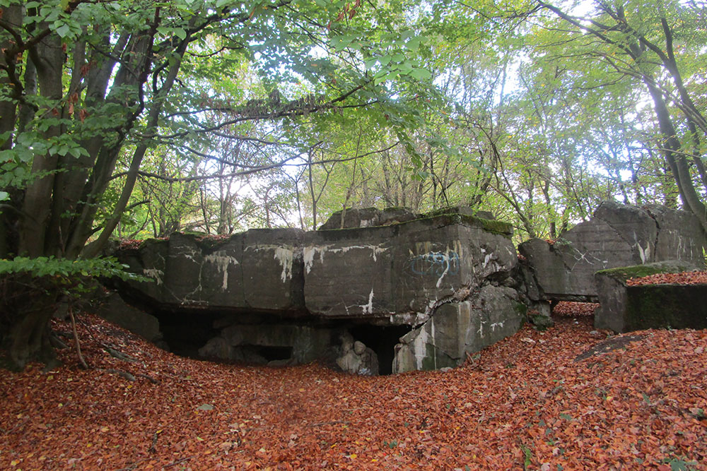 Westwall - Remains Bunker 481 (Regalbau B, MG Schartenstand)
