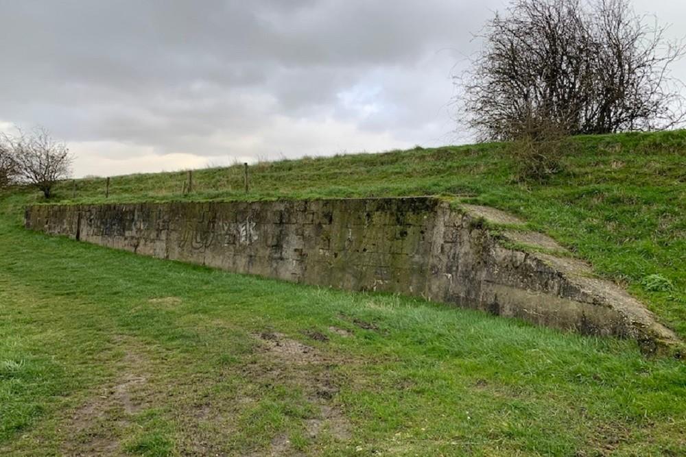 Formsteine wall