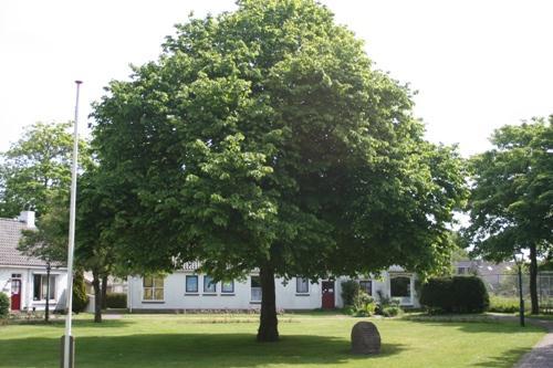 Herdenkingsboom Schiermonnikoog