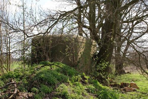 KW-Linie - Bunker VA19