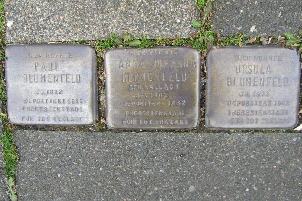 Stolpersteine Wörthstraße 17