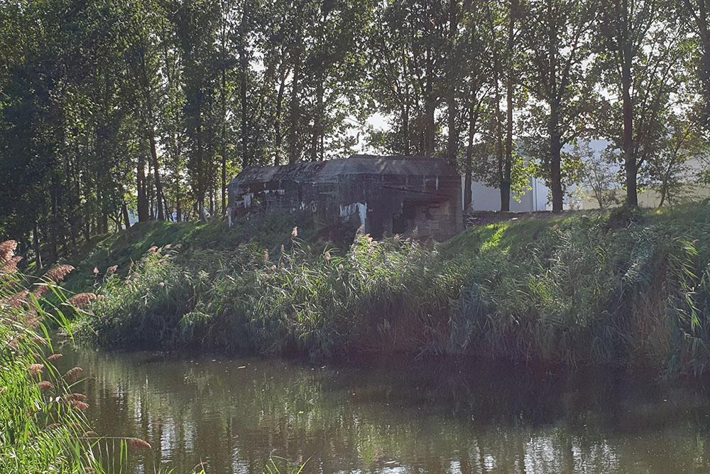 Pantherstellung - Bunker R002-P
