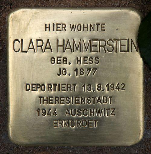 Stolperstein Delbrückstraße 17