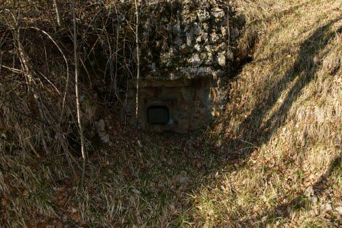 Alpine Wall - Fort No. 1 Studena