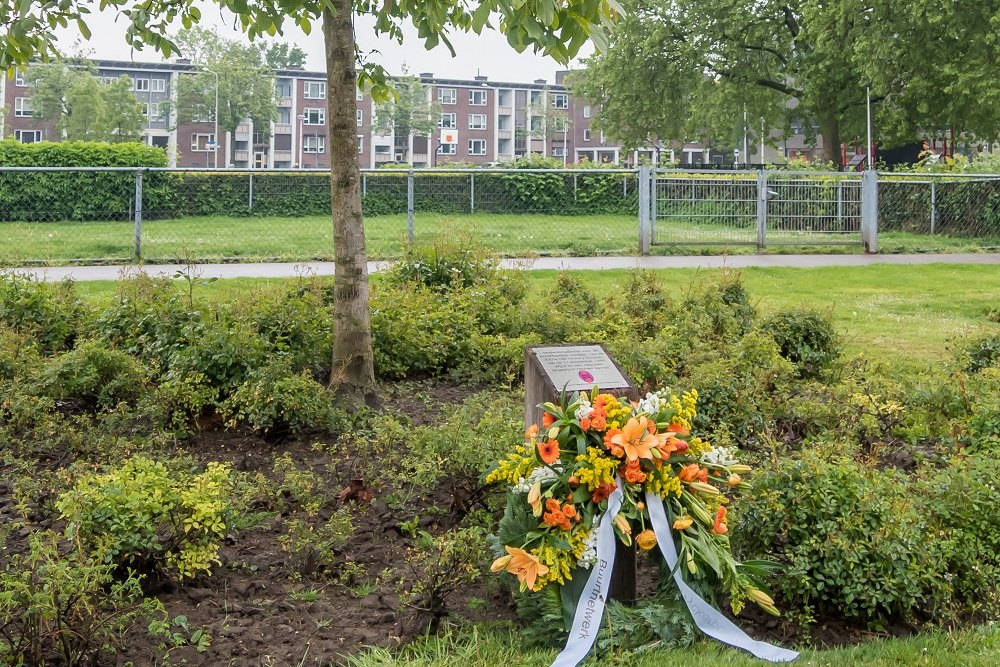 Bevrijdingsboom Old Hickoryplein Maastricht