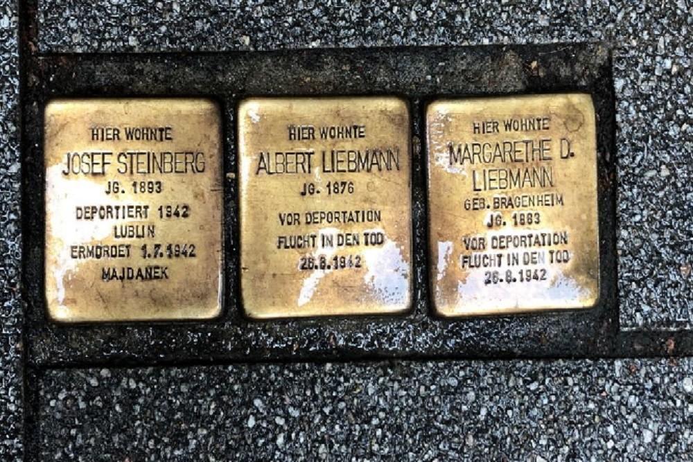 Stumbling Stones Untere Albrechtstraße 13