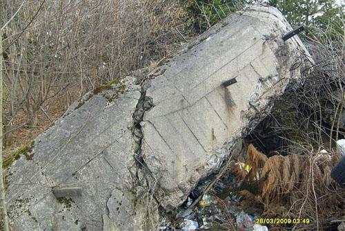 Molotov Line - Remains Casemate Sanok (H)
