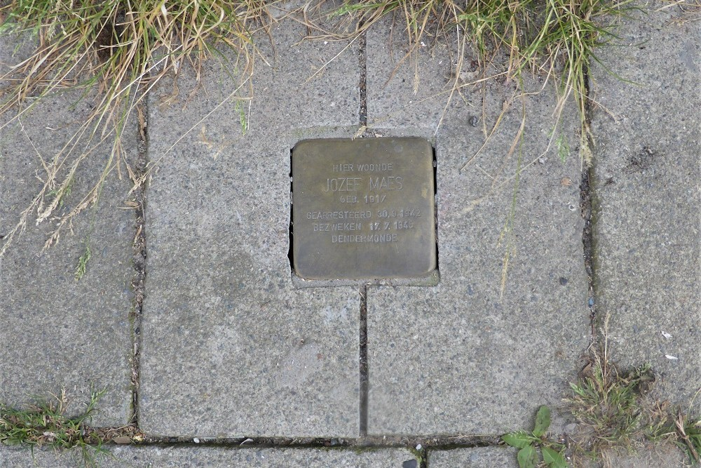 Stolperstein Dijkstraat 110
