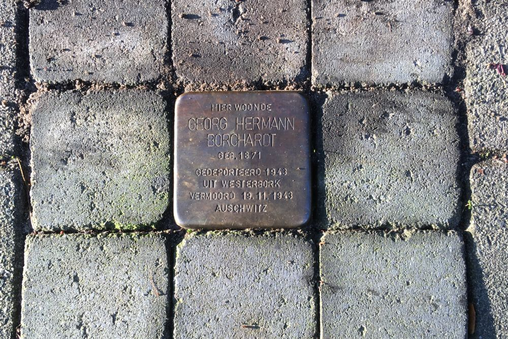 Stumbling Stone Siriusstraat 59