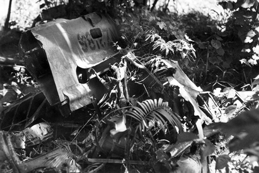 Crash Site P-40N-5-CU Kittyhawk NZ3186 Code 81/G
