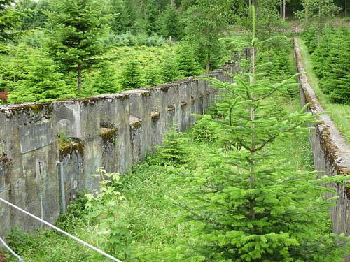 Limmatline - Tank Barrier Uitikon Waldegg