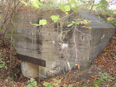 Duitse Bunkers Oostvoorne