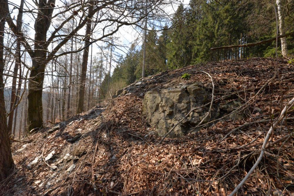 Bunker P115 Ochsenkopf