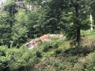 Westwall Bunker Remains
