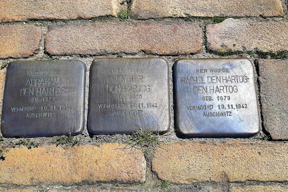 Stumbling Stones Lauwers 8