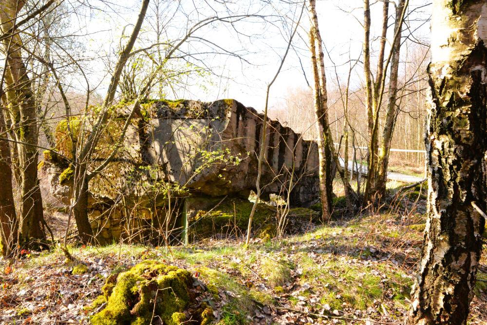 Bunker 359/360 Todtenbruch