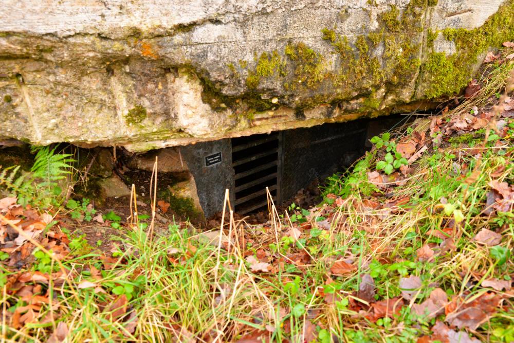 Remains Bunker Schleiden