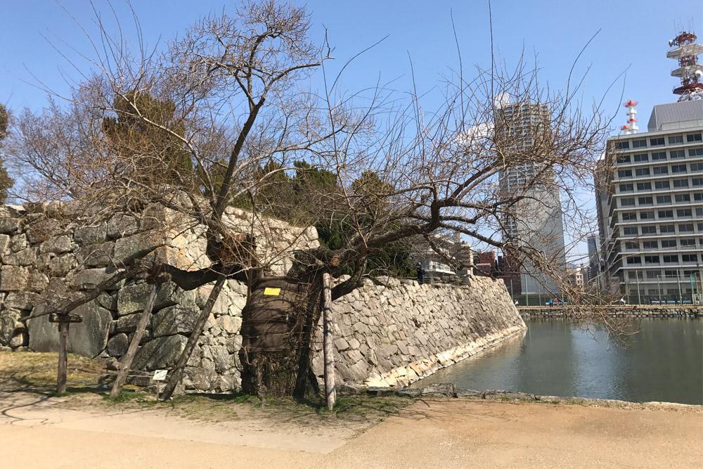Atoombomboom Hiroshima