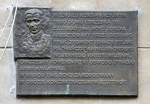 Plaquette Zygmunt Rylski