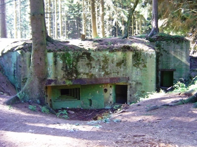 Pillbox No. 132 on Der Buhlert