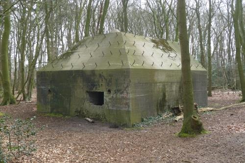 Group Shelter Type P Koggerbos