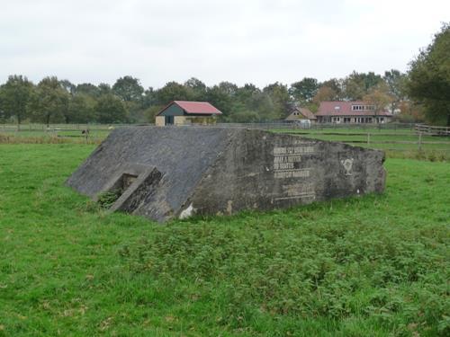 Groepsschuilplaats Type 1918/I Vechten