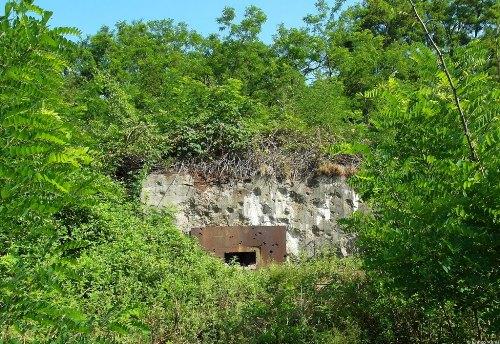 Westwall - Regelbau 10 Bunker Roden