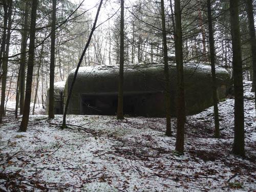 Maginot Line - Casemate Drachenbronn Sud