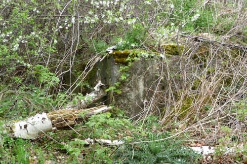 Demolished Pillbox Propsteier Wald