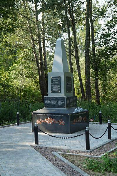 Soviet War Graves Chulkovskoe Cemetery