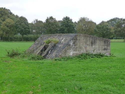 Groepsschuilplaats Type 1918/I Rhijnauwen