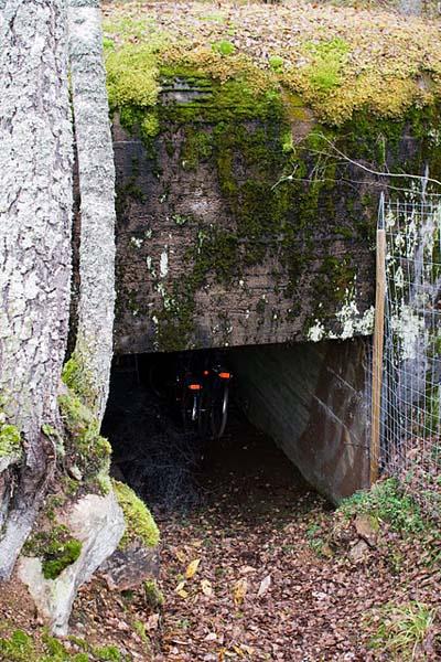Salpalinie - Bunker Virohlati