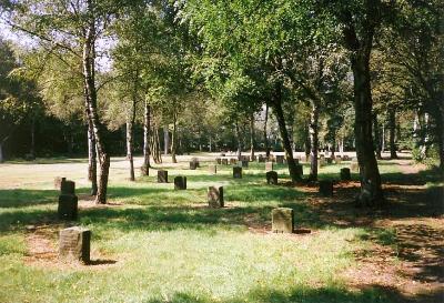 Penal Camp Wesuwe (Emslandlager VIII)