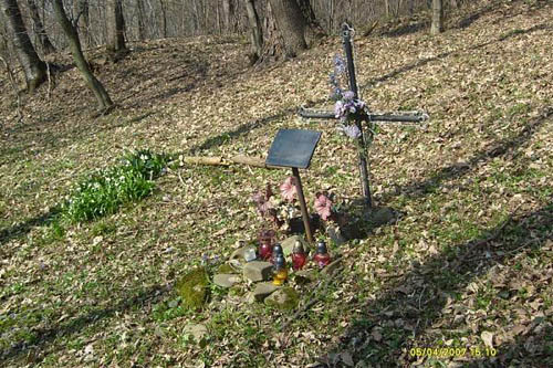 Mass Grave Victims National Socialism Sanok