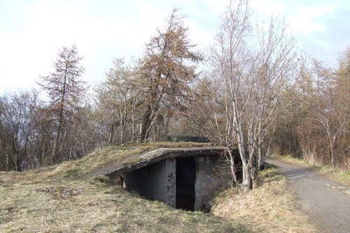 German Anti-aircraft Battery Østmarka