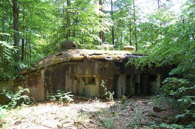 Maginot Line - Blockhouse Biesenberg (6)