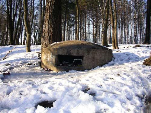 Soviet Gun Battery Udel'nyy (St. Petersburg)