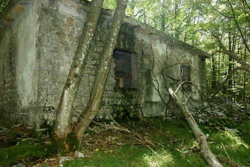 Alpine Wall - Bunker Trstenik