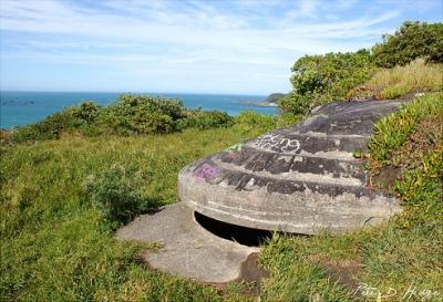 Fort Dorset