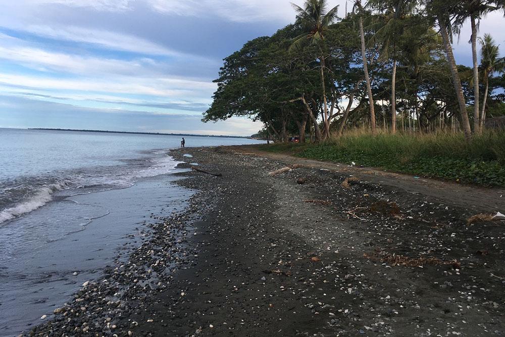 Lunga Point