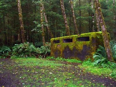 Bunker Tillamook Head