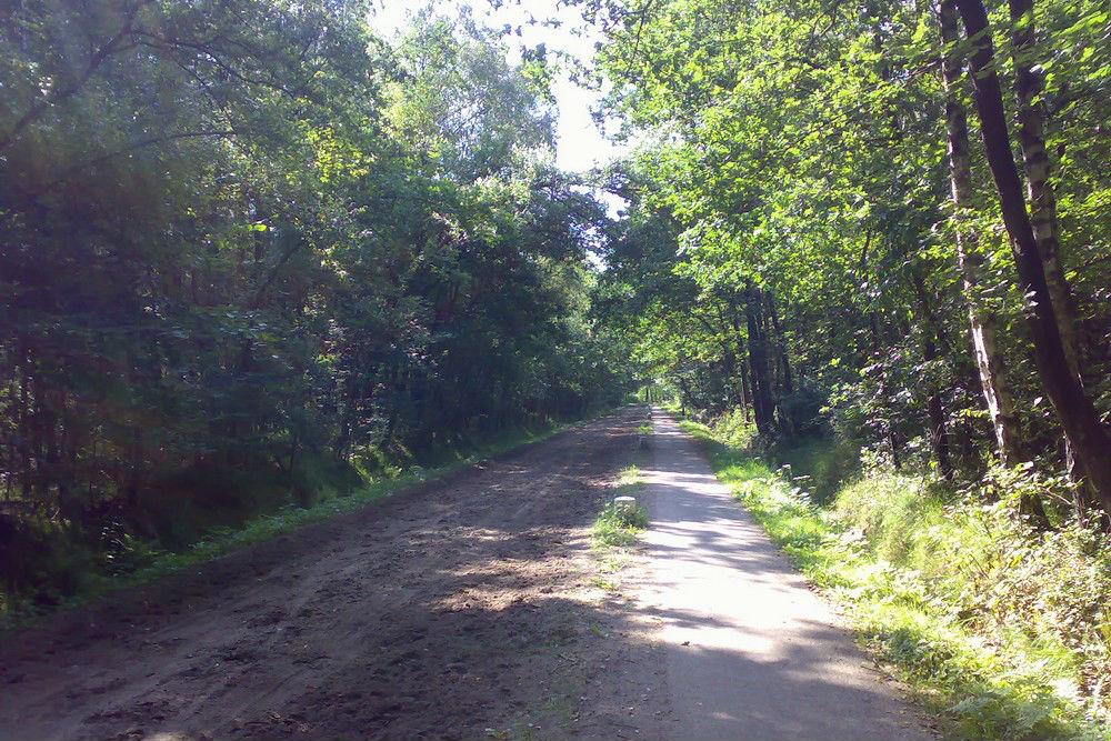 Secret German Runway Drienerlo