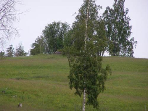 Stalinlinie - Kazemat Garbolovo (D)