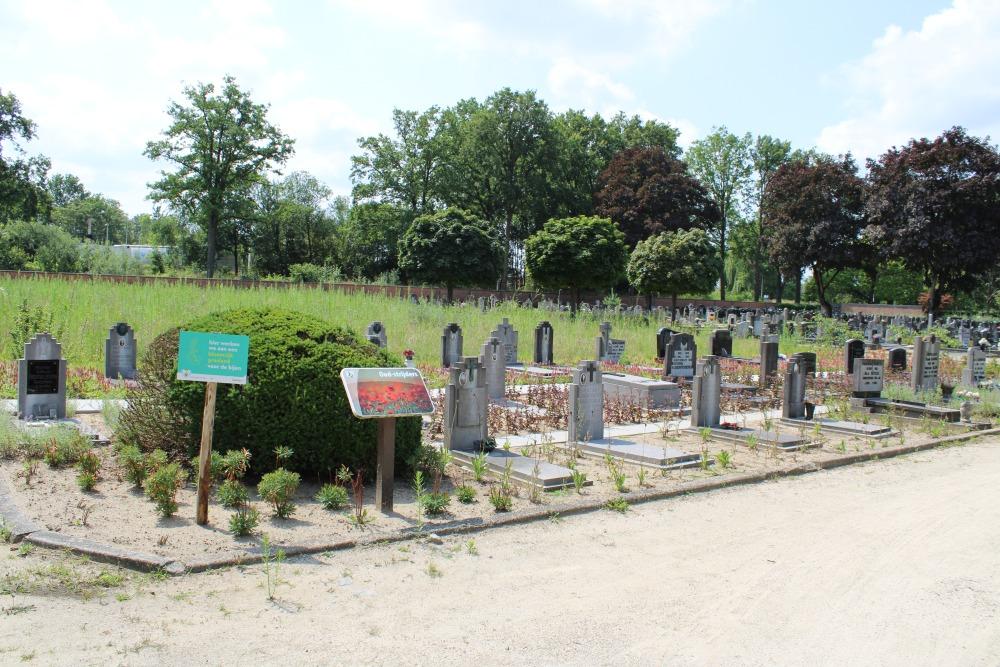 Veteran Cemetery Beringen-Mijn