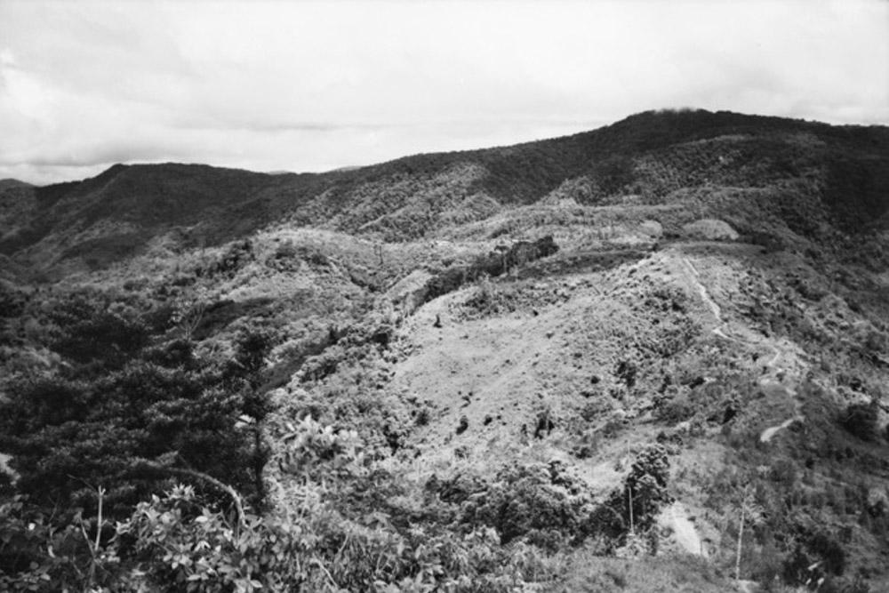Kokoda Trail - Brigade Hill