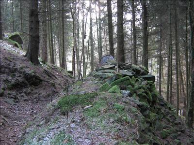 Westwall - Duitse Veldstelling