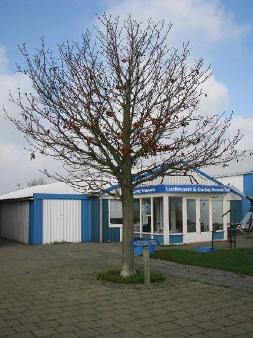 Remembrance Tree Deportation Residents of Texel